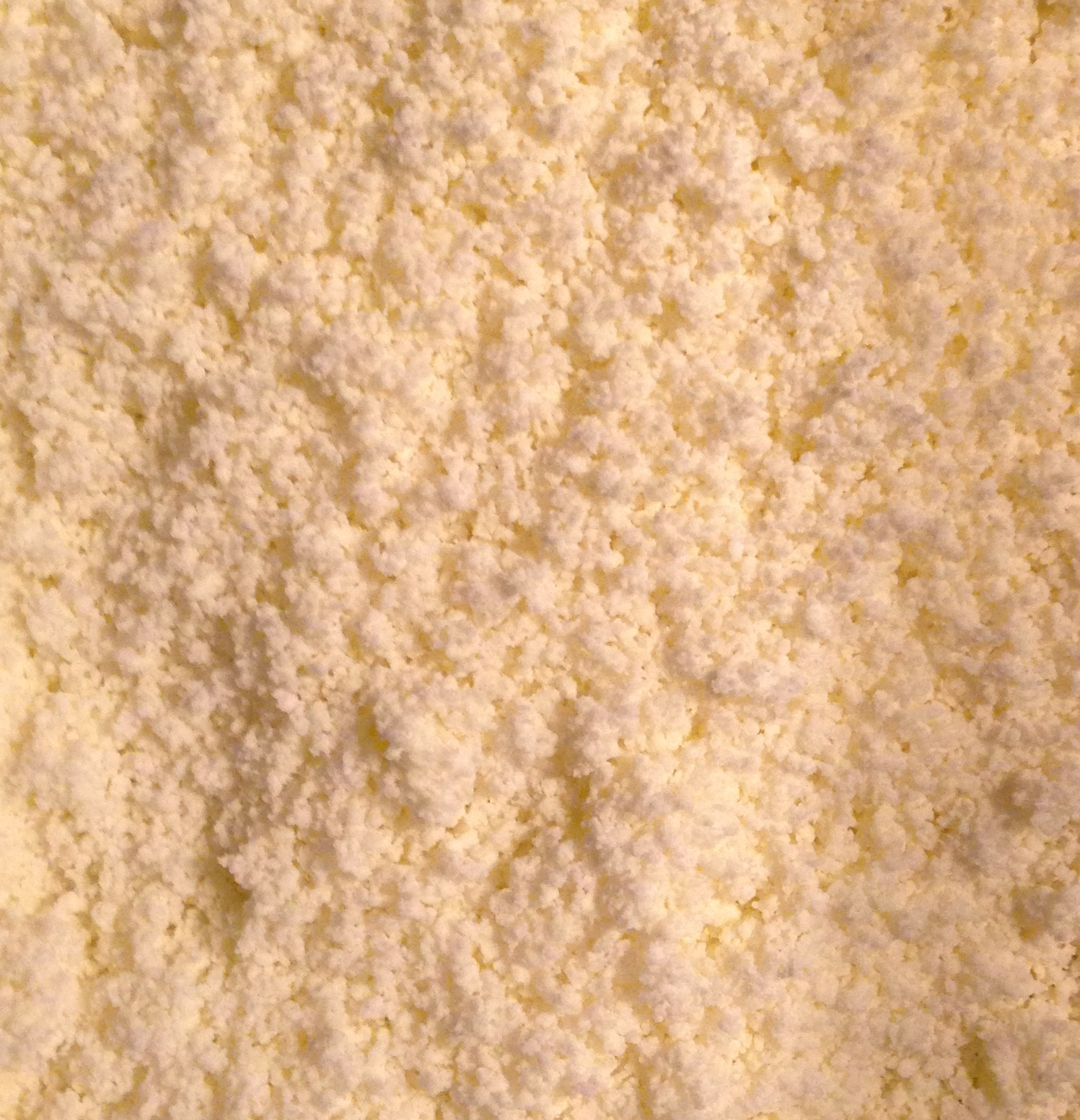 Olive Oil Powdered-cropped